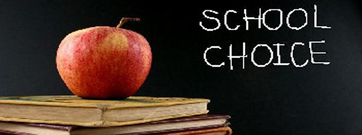 School Choice Banner Image